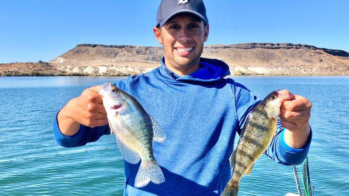 Jordan Rodriguez holds a crappie and a perch caught at C.J. Strike Reservoir.